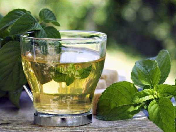 beneficios del te verde con menta
