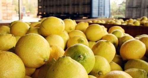 beneficios del agua tibia con limon y bicarbonato