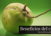 beneficios del coco