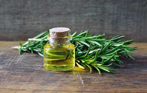 beneficios del aceite de romero