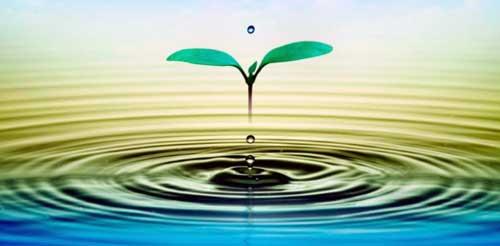 beneficios del agua tibia con limon