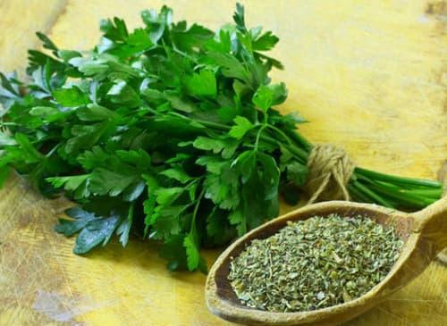 perejil planta medicinal