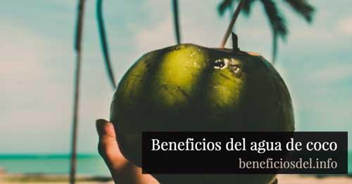 beneficios del agua de coco