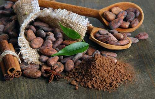 cacao puro desgrasado