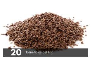 20 beneficios del lino